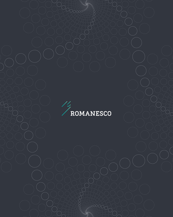 romenesco-visual-identity22