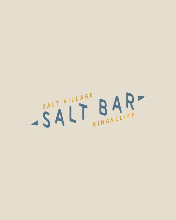 salt-pres16