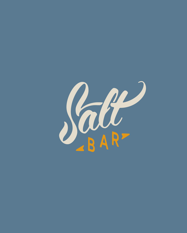 salt-pres6