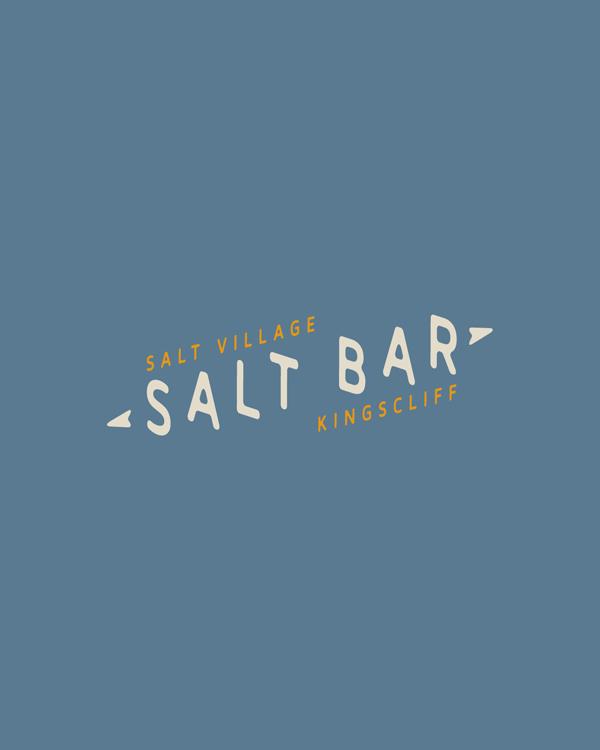 salt-pres9