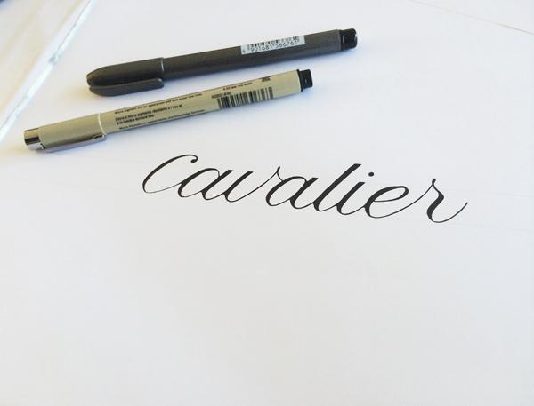 cavalier3