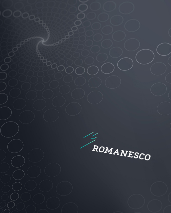 romenesco-visual-identity23